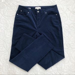 Talbots Midnight Blue Velveteen Curvy Fit Pants